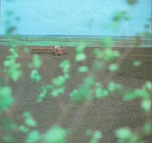 Сев зерновых